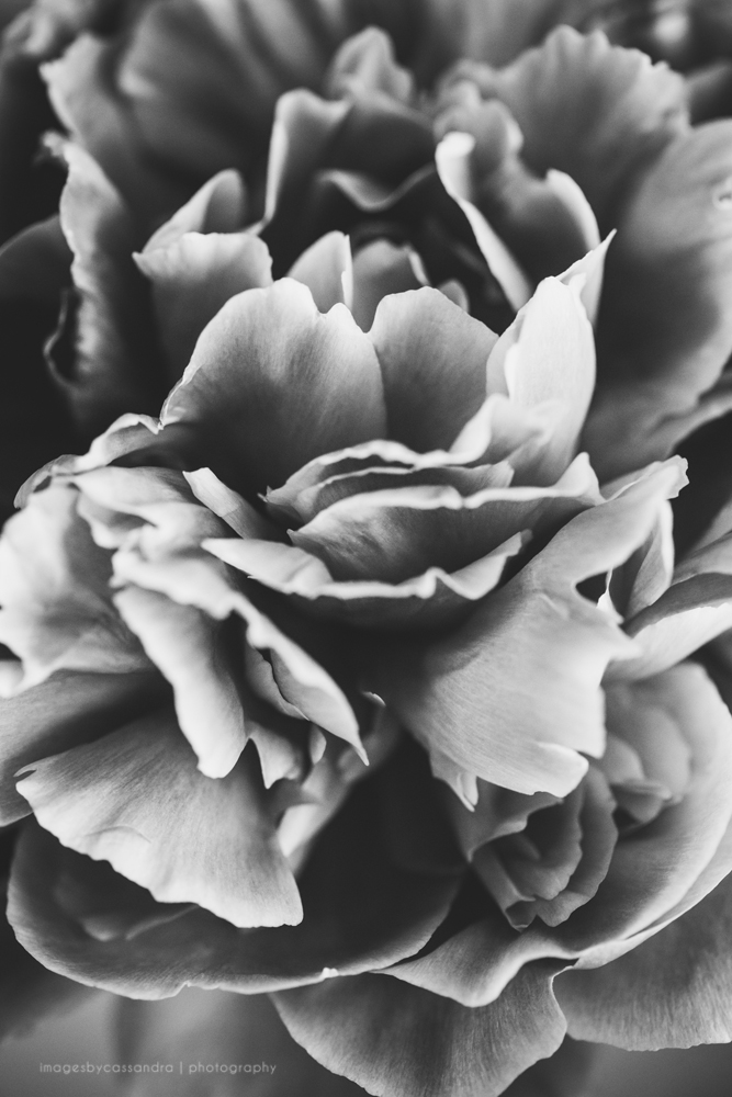 delicate texture
