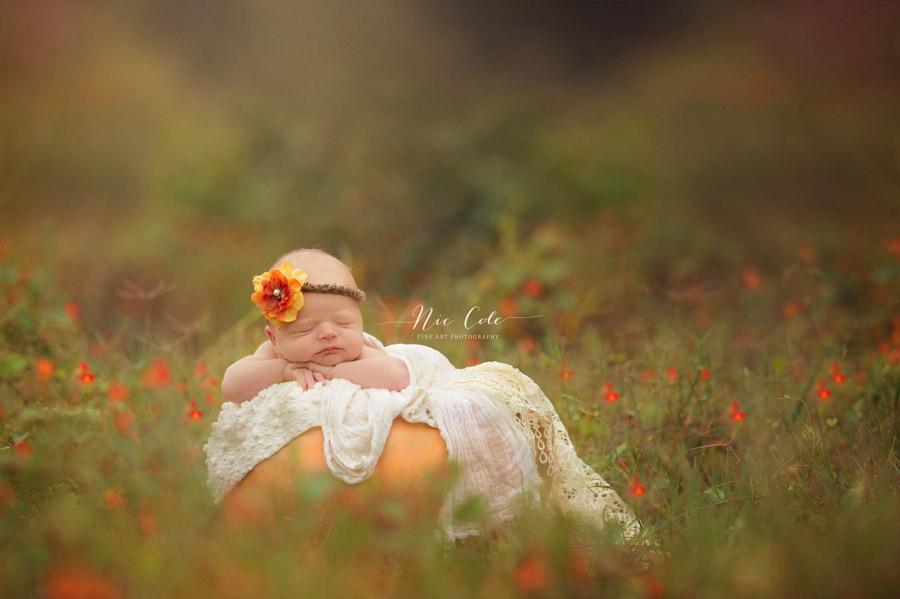 Charlotte-newborn-photographer-baby-nestled-in-a-pumpkin