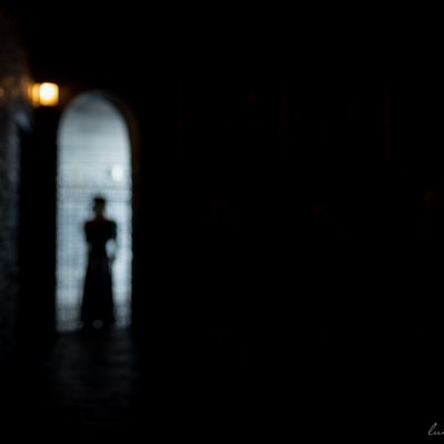 KateWinslow_Lady_in_the_Shadows