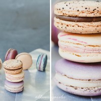 macaroons food photography by allison jacobs