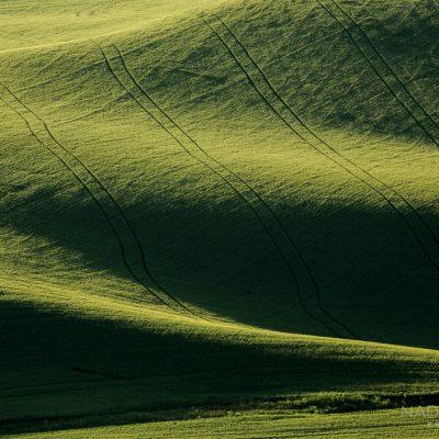nadeen_flynn_ green_palouse_landscape