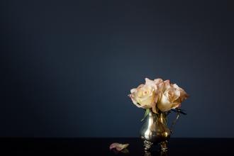 soft pink roses in silver tea service vase