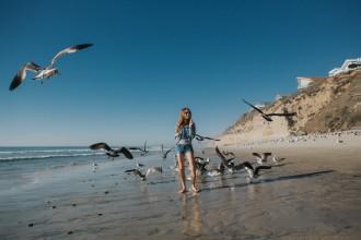 TINY-Birds-Beach