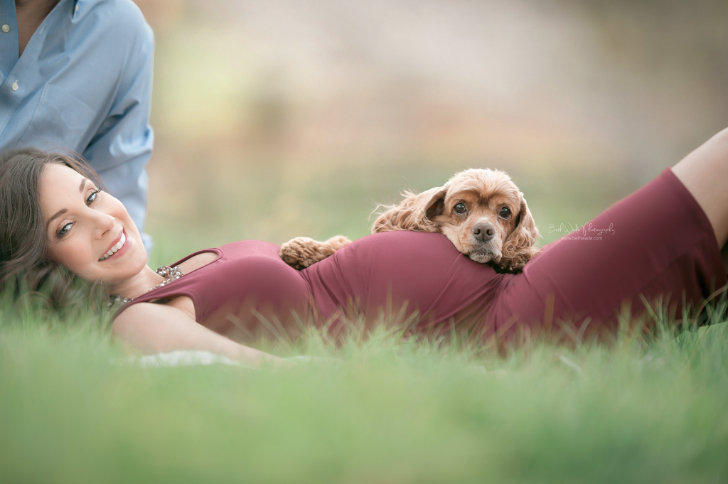 puppy big sister resting on mamas baby belly - charlotte maternity photographer beth wade