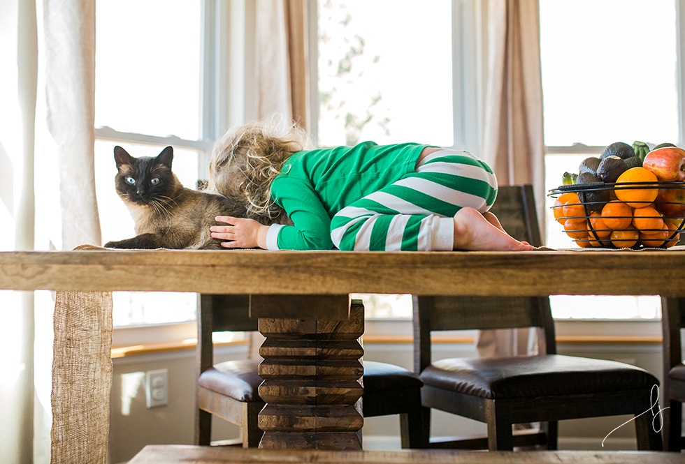 documentary-photo-of-toddler-hugging-cat-by-colorado-child-photographer-lily-jean-photography