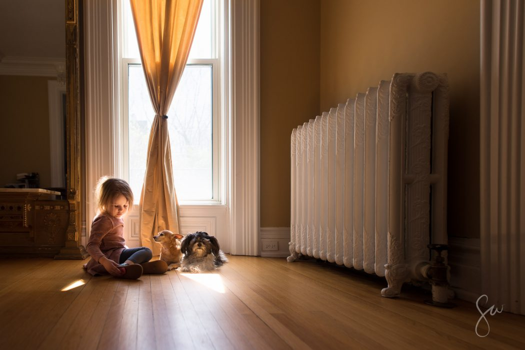 Environmental-Portrait-of-Little-Girl-Sitting-in-Beautiful-Natural-Reflected-Light-with-a-Chihuahua-and-a-Shih-Tzu-by-Sarah-Wilkerson-