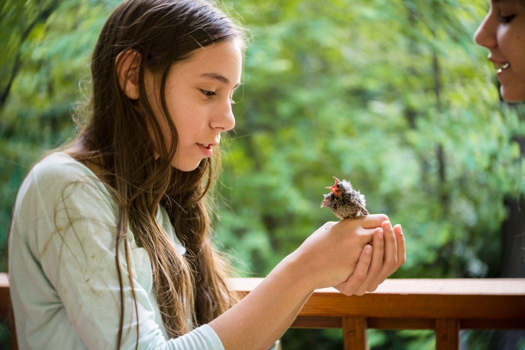 girl-holding-baby-bird-lensbaby-twist-60-child-photography-Sarah-Hodges