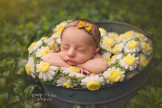 baby_Quinn