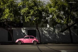 punch-bug-pink