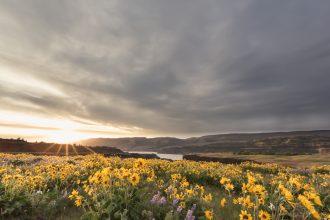 sunset-Rowena-OR-nadeen-flynn