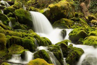 waterfll-wednesday-WA-creek-nadeen-flynn