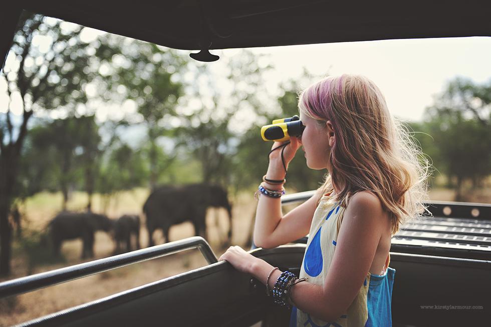 Spotting Elephants in Africa