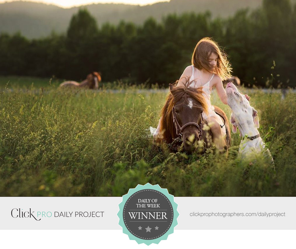 girl-on-horse-with-dog-in-field