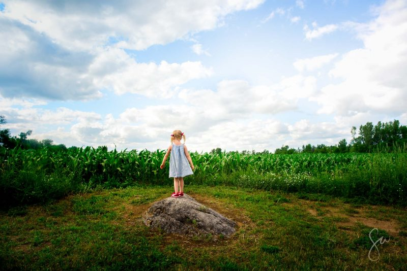 Everyday-Life-Color-Photo-of-Little-Girl-Under-Sunny-Blue-Skies-Standing-in-Cornfield-by-Sarah-Wilkerson-