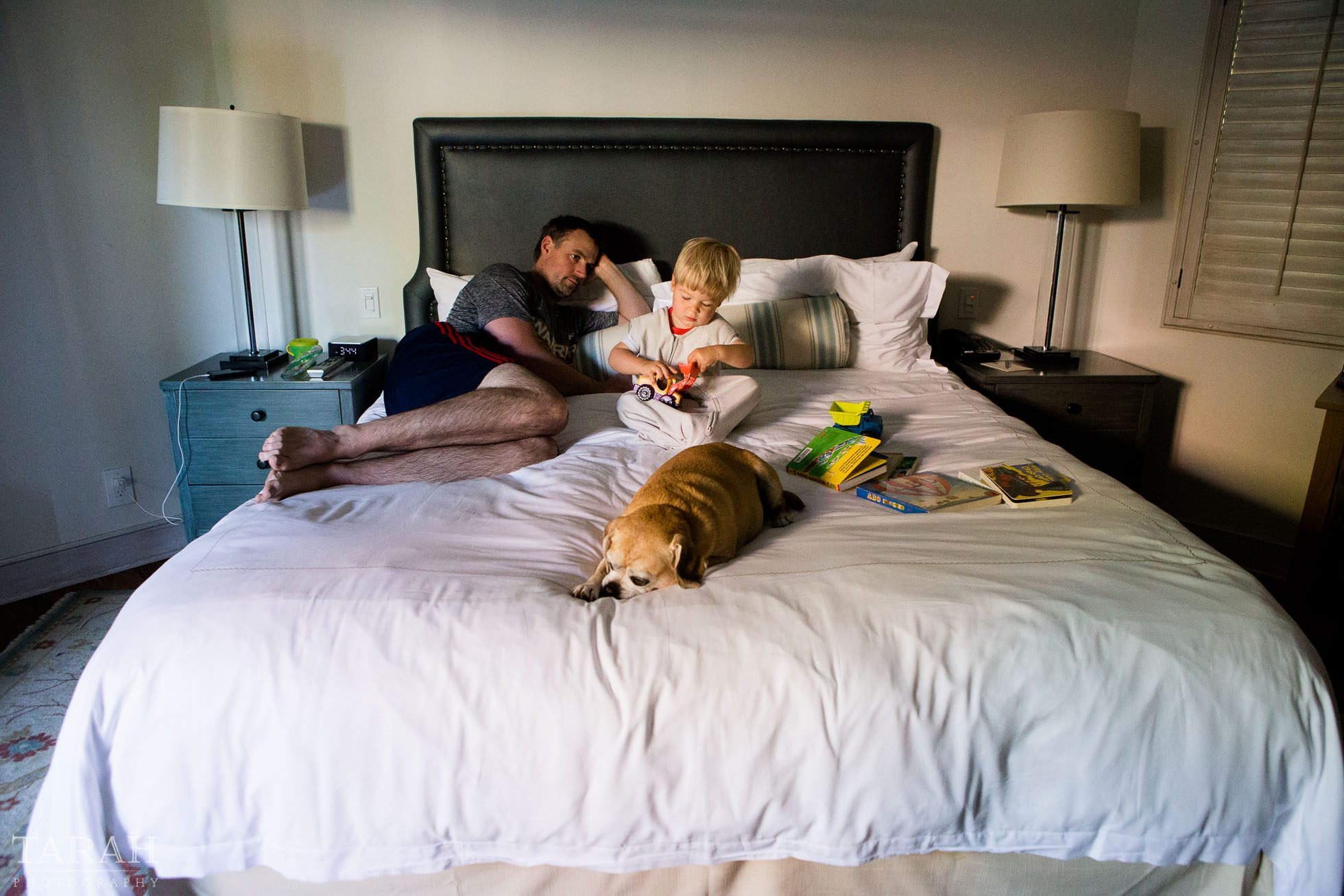 Hotel fun by tarahphotography for Dog bed beside bed