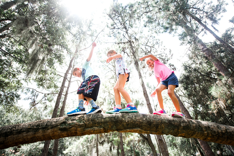 Climbing-tree-3-kids-wide-angle-by-Maggie-Fuller