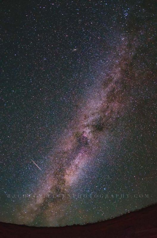 The Milky Way by Rachel Nielsen
