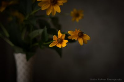 Little Imperfect Yellow Bouquet