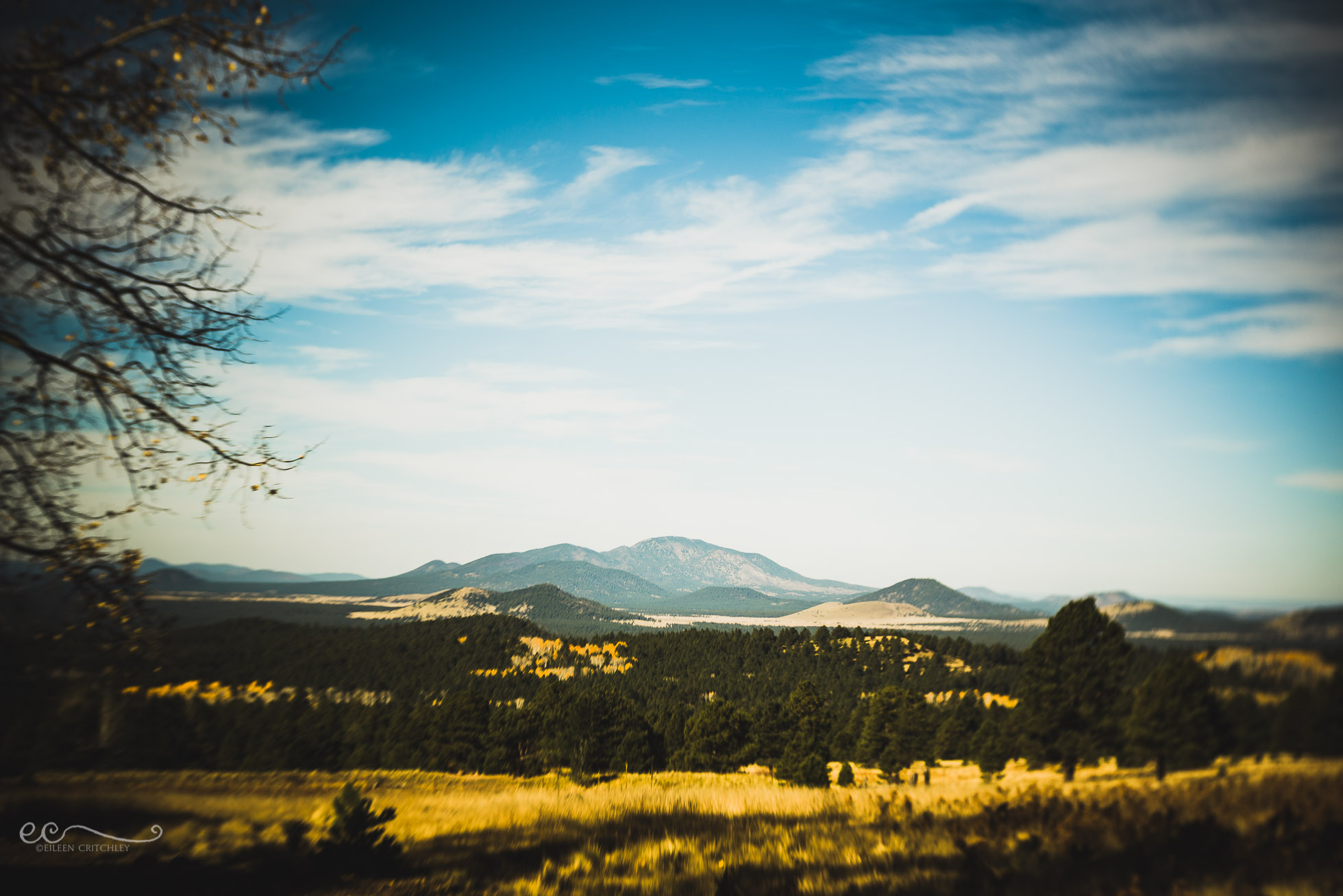 mountains_flagstaff_arizona_lensbaby_twist60-%22flagstaff-in-the-fall%22_by-eileen-critchley