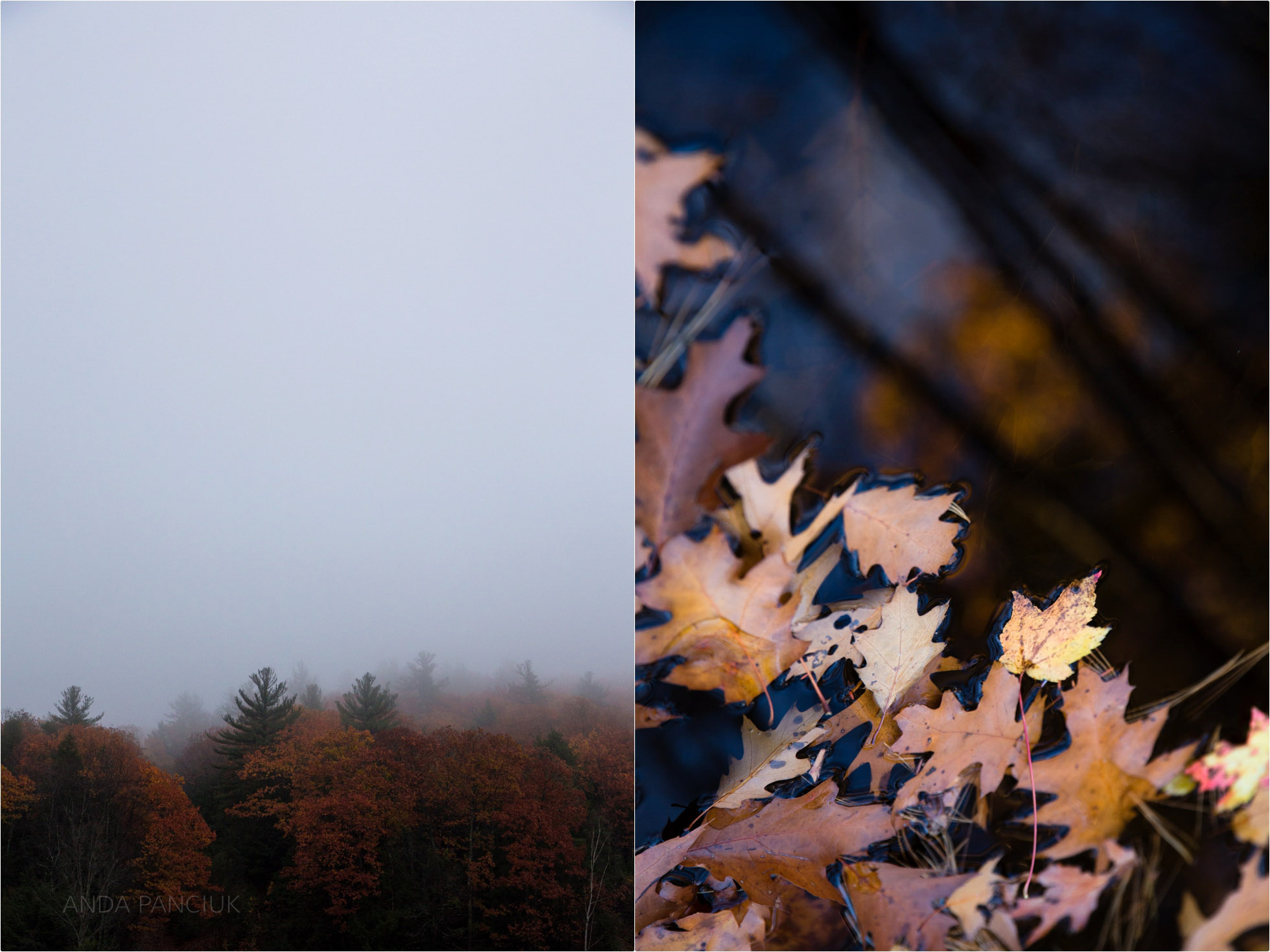 new-hampshire-two-ways