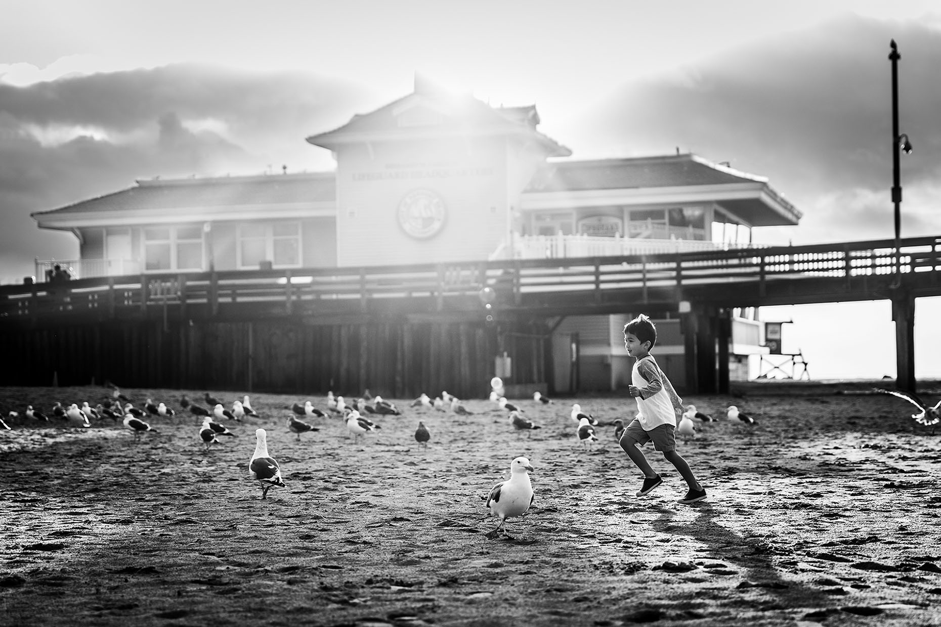 running-with-seagulls