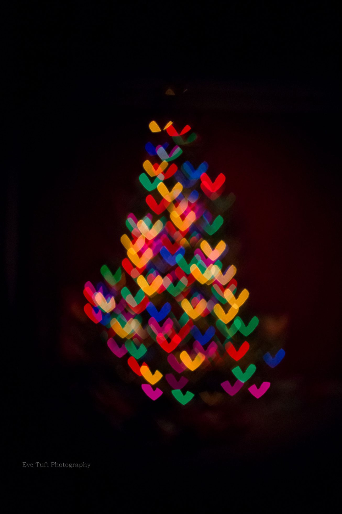 Iheart Christmas.I Heart Christmas Trees By Eve Tuft Photography For The