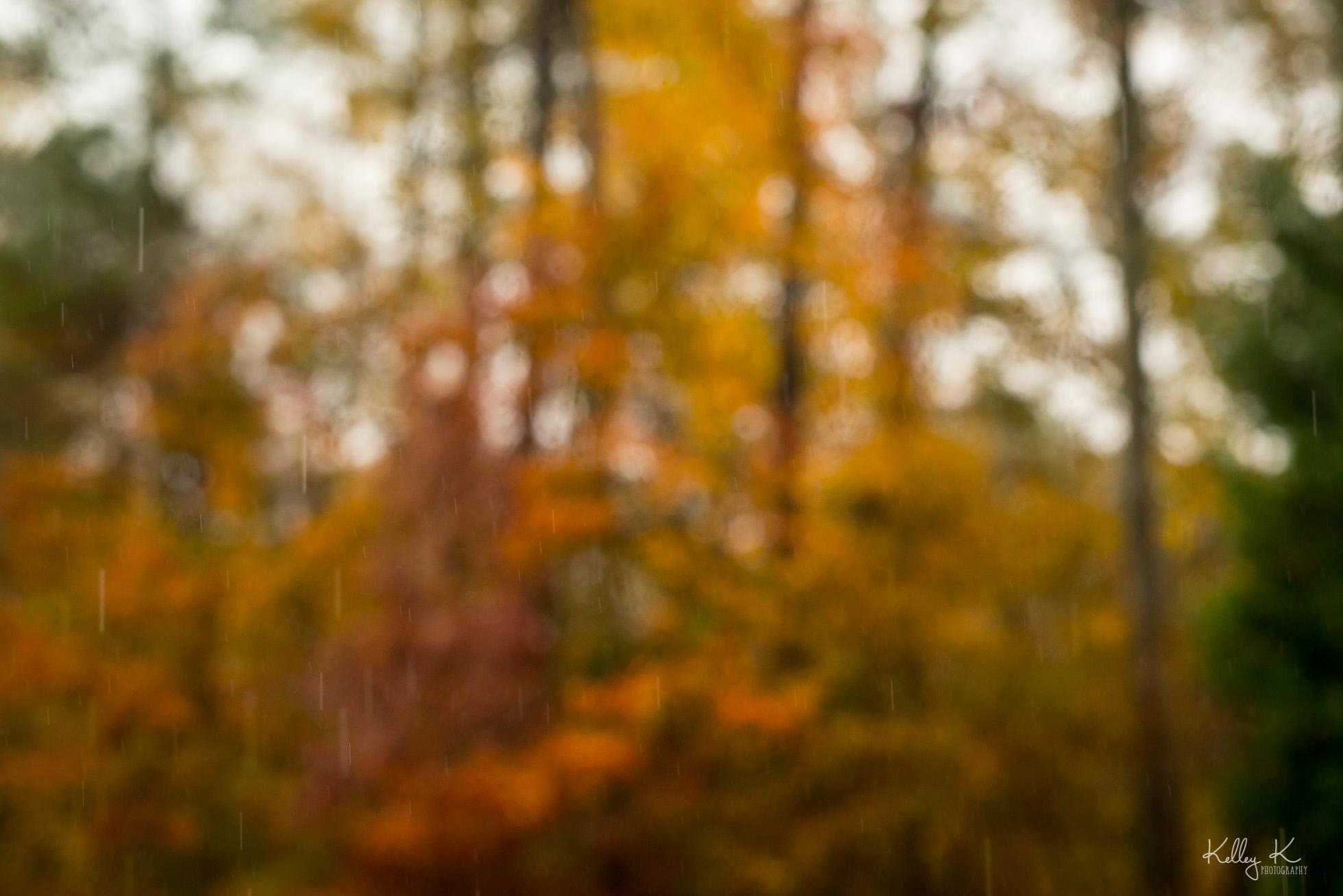 rainy-fall-bokeh-by-kelleykphotography-smyrna