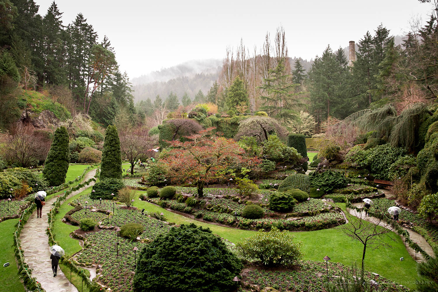 Butchart Gardens, All to Ourselves by Marissa Gifford