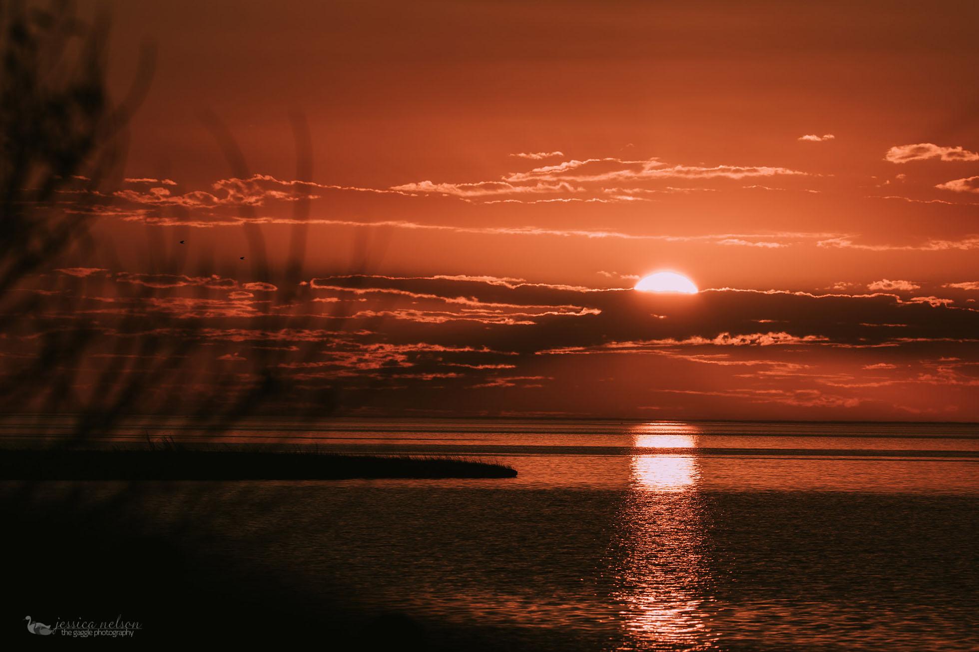 sunset jessica nelson