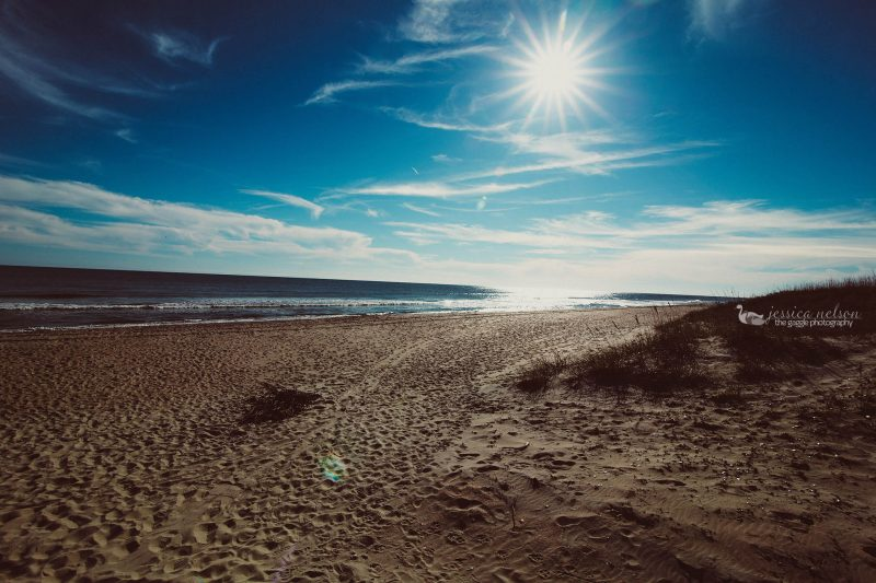 beach jessica nelson