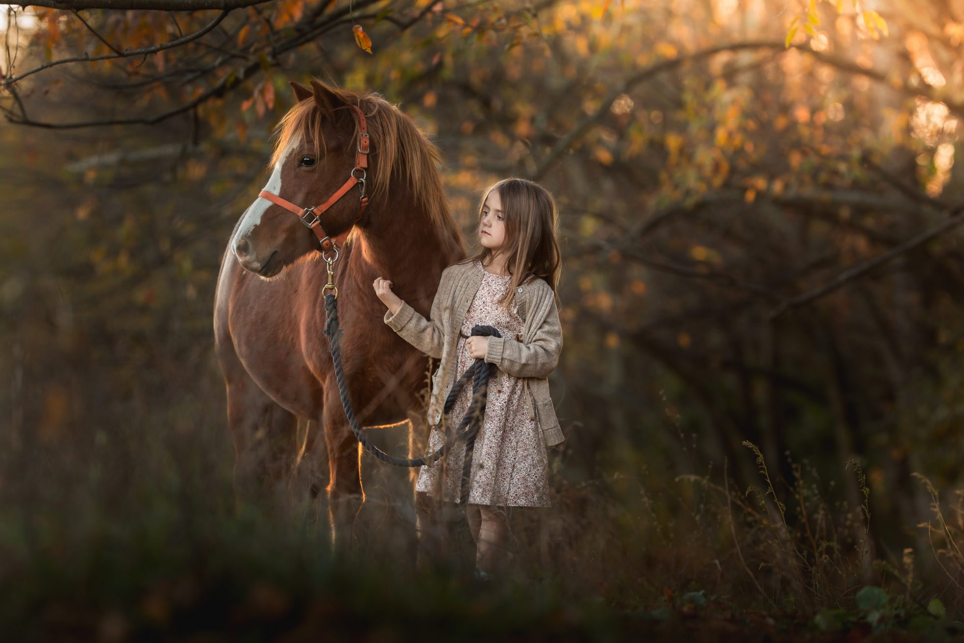 Fine art Portrait of a little girl and her pony in the fall, photographed by Clare Ahalt Photography, a fine art portrait photographer located in Mid Maryland, serving Maryland, Washington DC, Northern Virginia.  available for travel.