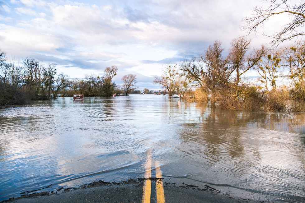 flooded road in northern California