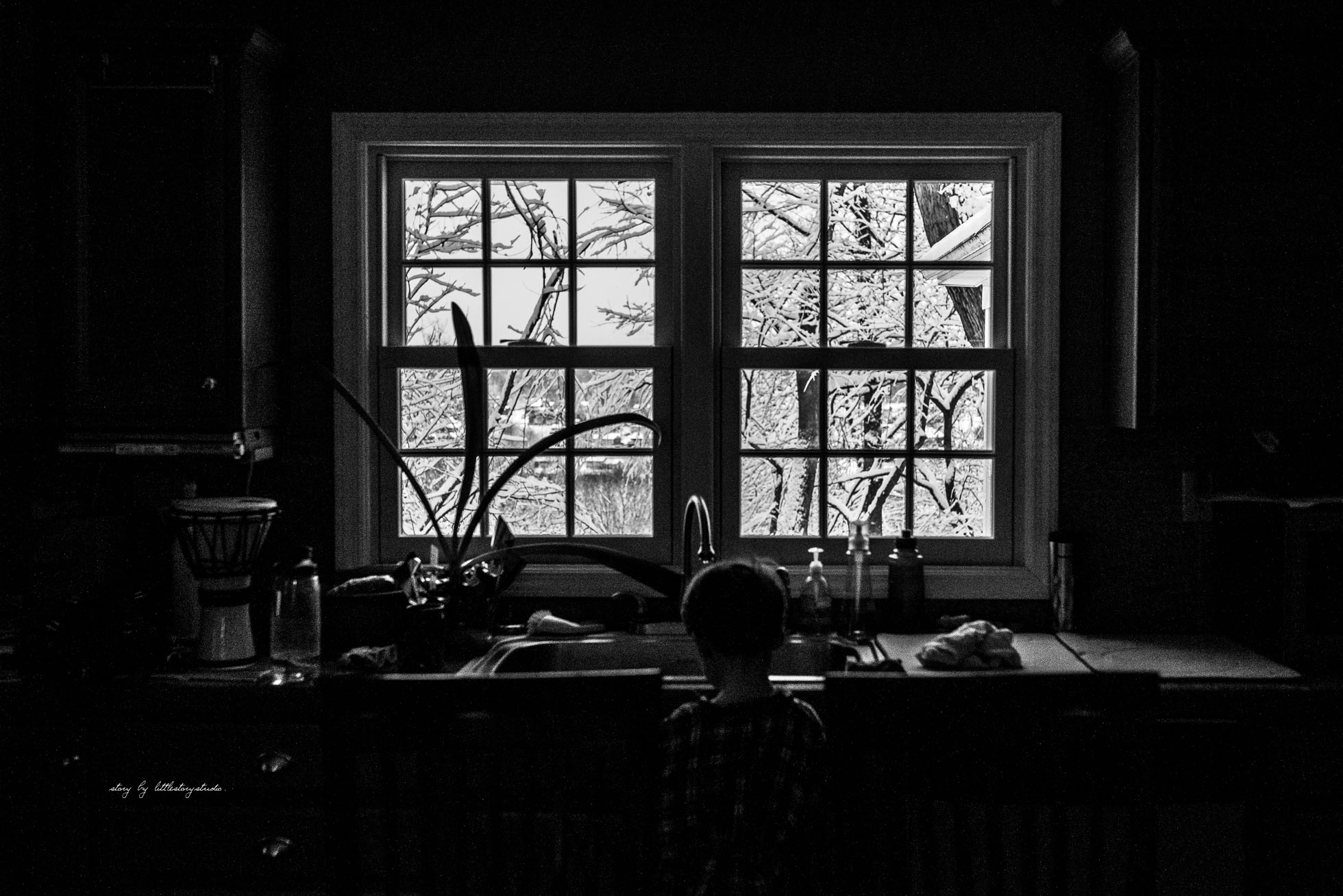 pittsburgh-family-photographer-boy-by-snowy-window