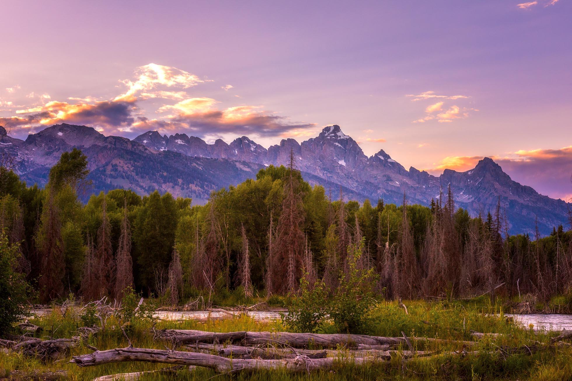 Purple Mountain Majesty By Kristen Ryan