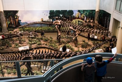 boys-overlooking-dinosaur-exhibit-at-pittsburgh-carnegie-museum-of-natural-history
