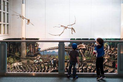 boys-looking-at-pteradon-skeletons-at-Pittsburgh-carnegie-museum-of-natural-history