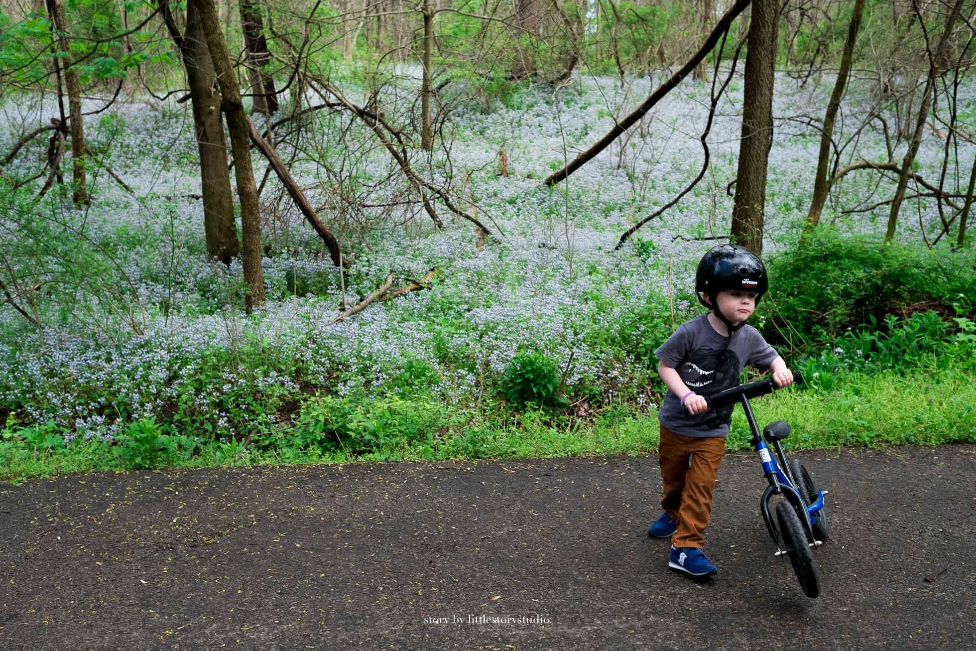 spring-wildflowers-and-boy-on-bike