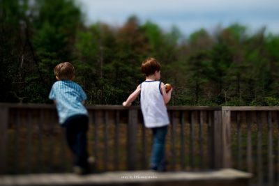 boys-looking-at-bog-on-wooden-pier