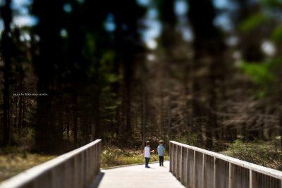 boys-on-walking-path