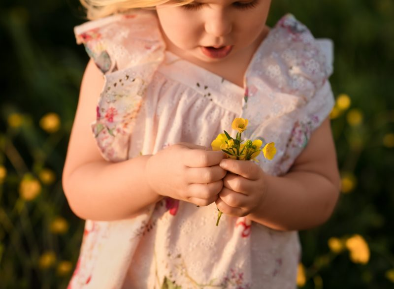 yellow flowers toddler girl sunkissed golden hour portrait edmond ok photographer oklahoma city natural light photographer kate luber photography
