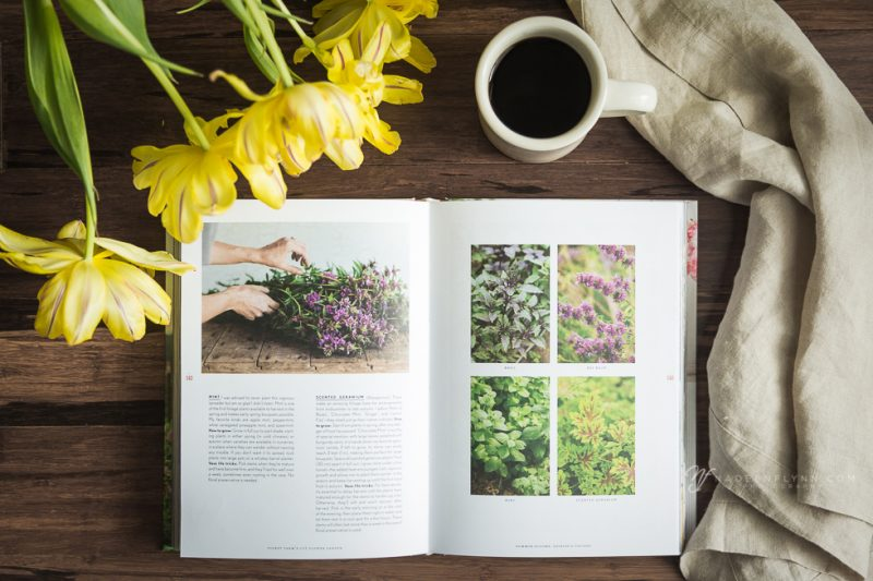 perfect pastime garden book and coffee