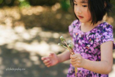 little girl holding dandelion stems