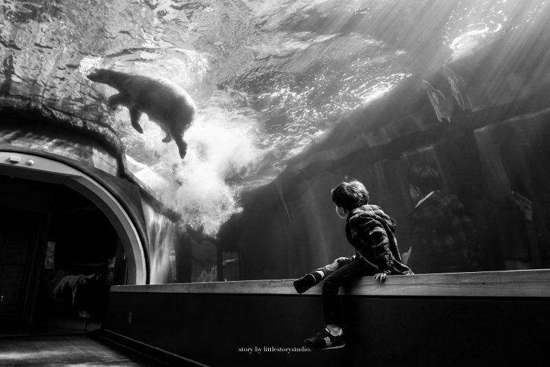 pittsburgh-family-photographer