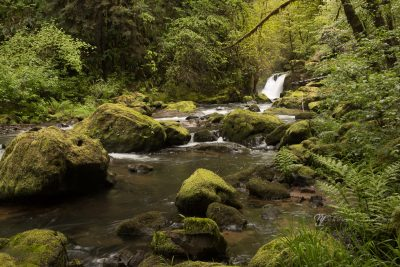 upper falls on the Coquille River