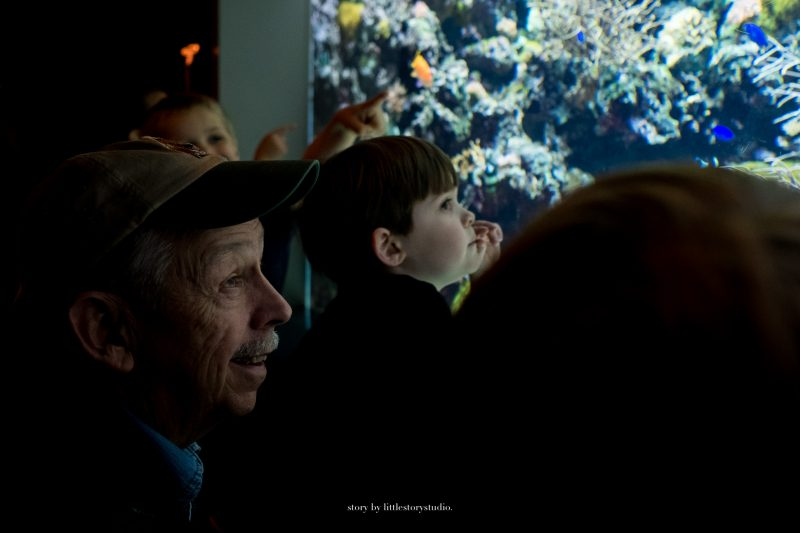 pittsburgh-photographer-grandfather-and-grandson-at-aquarium
