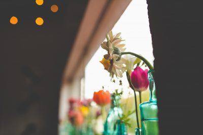 flowers lined up in windowsill tiffany kelly