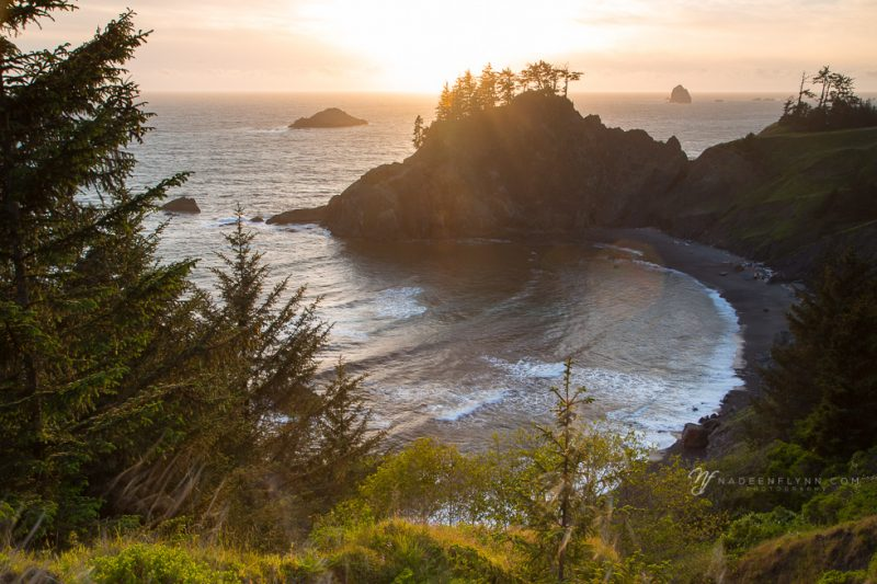 Samuel Boardman State Park, Oregon at sunset