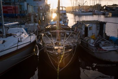 sunset falling on an old docked boat