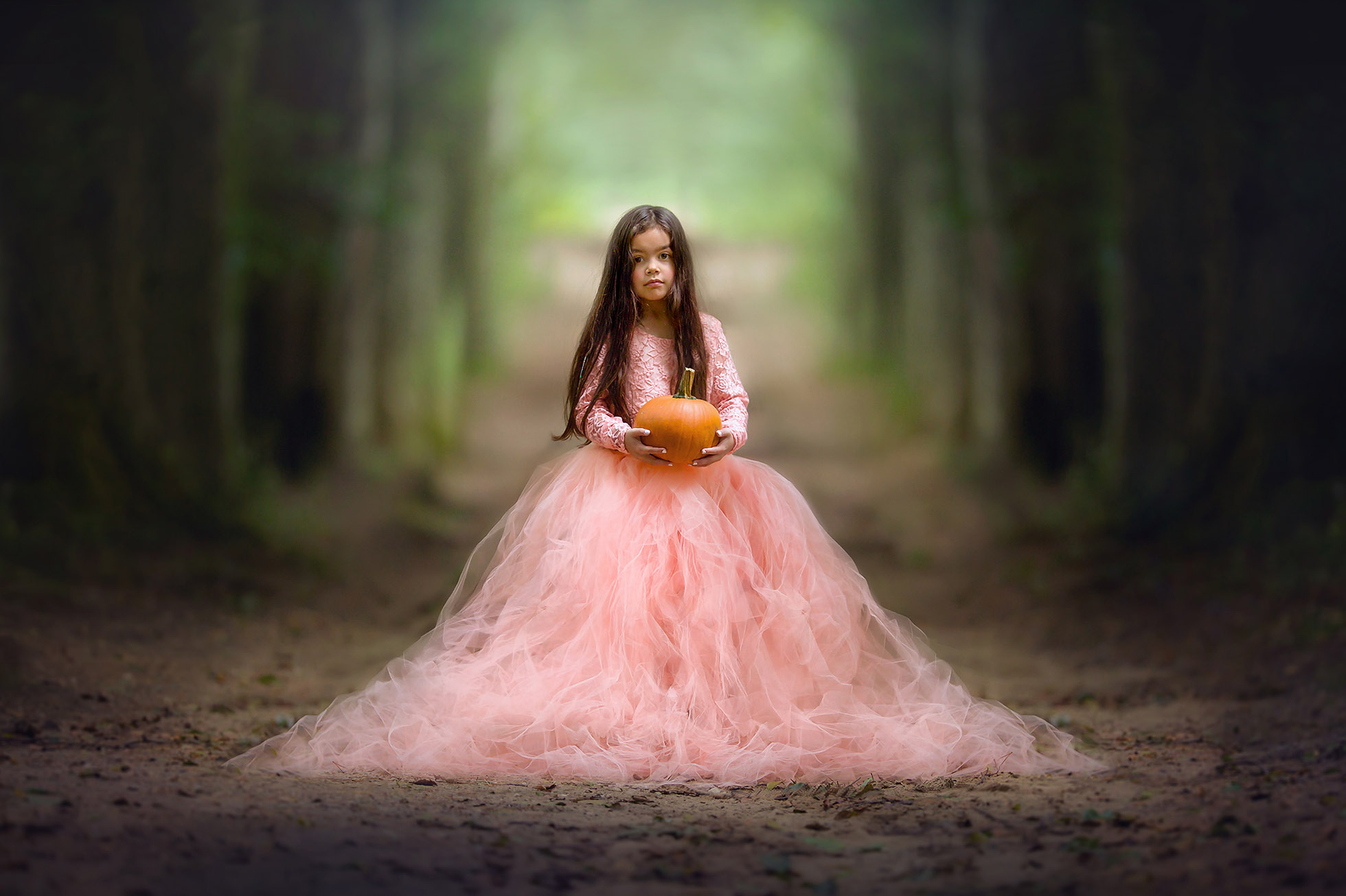 image of a little girl in a princess dress and a pumpkin by Willie Kers