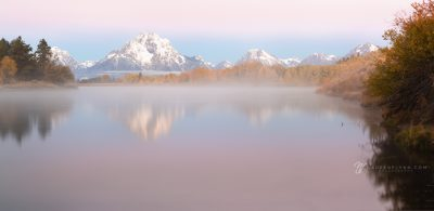 Foggy pink morning at Oxbow Bend, WY